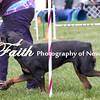 Agility ARC Nationals May 14 2017MelissaFaithKnightFaithPhotographyNV_4704