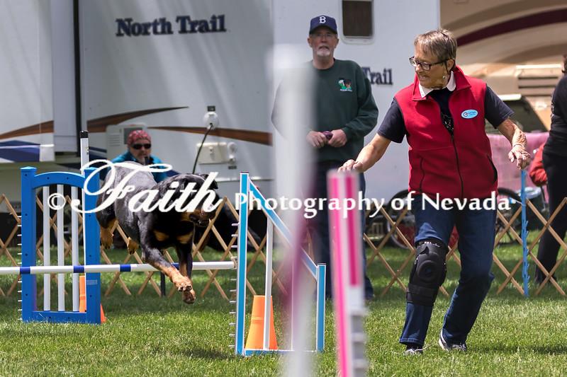 Agility ARC Nationals May 14 2017MelissaFaithKnightFaithPhotographyNV_1708