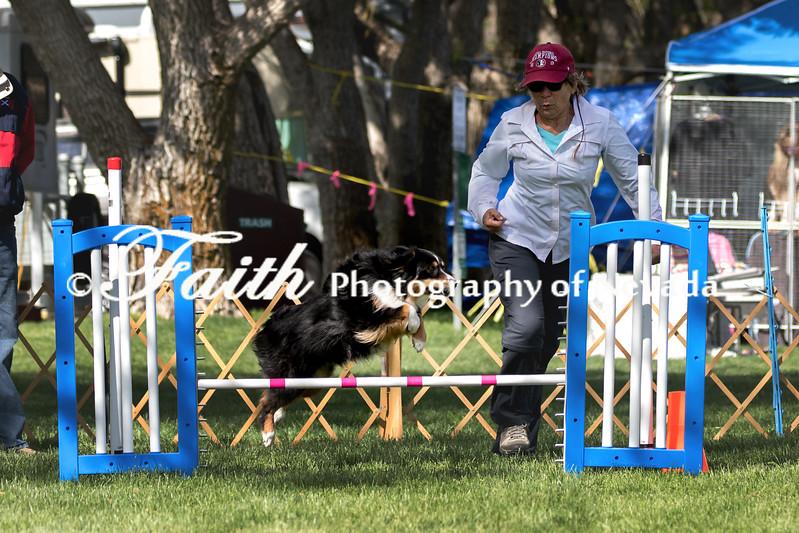 Agility ARC Nationals May 14 2017MelissaFaithKnightFaithPhotographyNV_2999