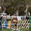 Agility ARC Nationals May 14 2017MelissaFaithKnightFaithPhotographyNV_3070