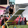 Agility ARC Nationals May 14 2017MelissaFaithKnightFaithPhotographyNV_3598