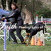 Agility ARC Nationals May 14 2017MelissaFaithKnightFaithPhotographyNV_3539