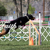 Agility ARC Nationals May 14 2017MelissaFaithKnightFaithPhotographyNV_3546