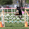 Agility ARC Nationals May 14 2017MelissaFaithKnightFaithPhotographyNV_3608