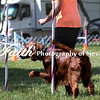 Agility ARC Nationals May 14 2017MelissaFaithKnightFaithPhotographyNV_3783