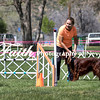 Agility ARC Nationals May 14 2017MelissaFaithKnightFaithPhotographyNV_3749