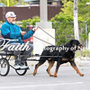 8x12 CARTING ARC Nationals 2017 May 16 MelissaFaithKnightFaithPhotographyNV_1599