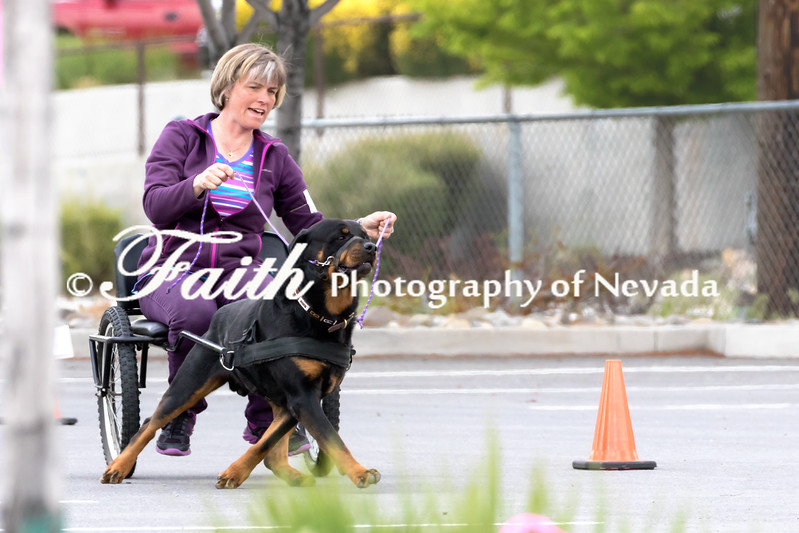 CARTING ARC Nationals 2017 May 15 MelissaFaithKnightFaithPhotographyNV_9608