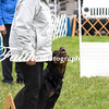 Obedience Rally  ARC Nationals 2017 May 16 MelissaFaithKnightFaithPhotographyNV_2153