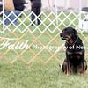Obedience Rally  ARC Nationals 2017 May 16 MelissaFaithKnightFaithPhotographyNV_2862