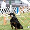 Obedience Rally  ARC Nationals 2017 May 16 MelissaFaithKnightFaithPhotographyNV_2844