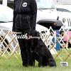 Obedience Rally  ARC Nationals 2017 May 16 MelissaFaithKnightFaithPhotographyNV_2832