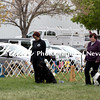 Obedience Rally  ARC Nationals 2017 May 16 MelissaFaithKnightFaithPhotographyNV_2896
