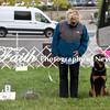 Obedience Rally  ARC Nationals 2017 May 16 MelissaFaithKnightFaithPhotographyNV_2718