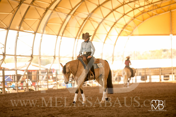AHT - Scottsdale Arabian Candids