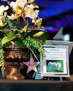 APC Gala for life 2012-90 - Copy