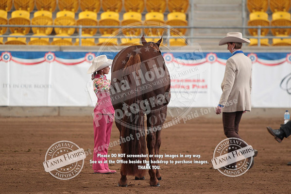 Day Three Tuesday Showmanship