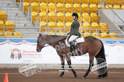Friday RWD HUNT SEAT EQUITATION