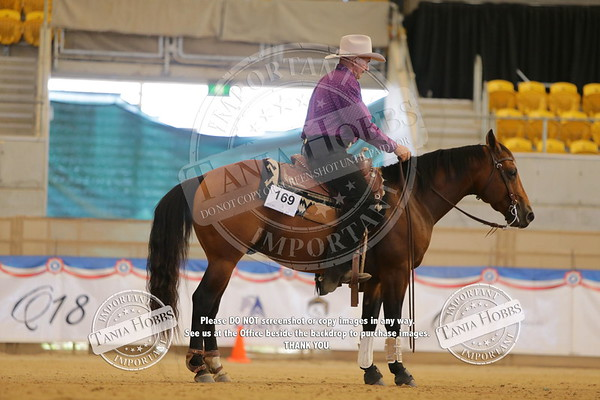 Friday National Show Reining