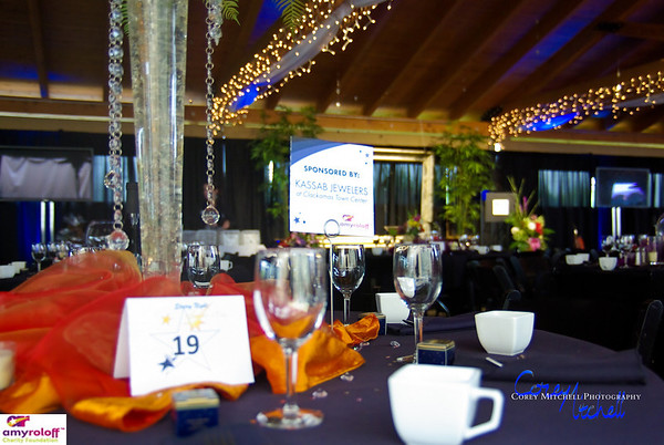ARCF Dinner Auction 2011-1
