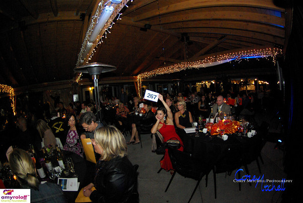 ARCF Dinner Auction 2011-563
