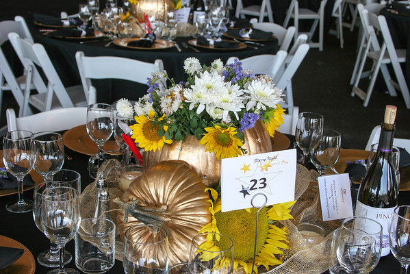 Amy Roloff Charity Foundation 2012 Starry Night - 3840