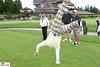 Amy Roloff Charity Foundation 2011 Golf Benefit - IMG_1892