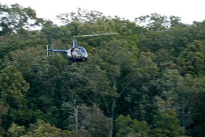 ASUSA_Treetop Observers_89A0225