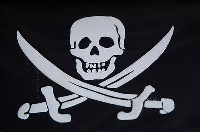 Skull & swords  flag 8756