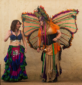 Butterfly and Belly dancer A8735