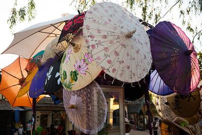 Umbrellas 8769