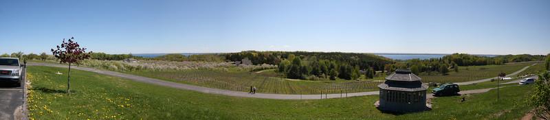Winery Pano