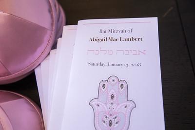 1-13-18 Abigail Lambert Bat Mitzvah-148