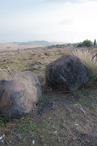 An example on the right of the volcanic basalt rock common in the area of the Sea of Galilee, Israel.