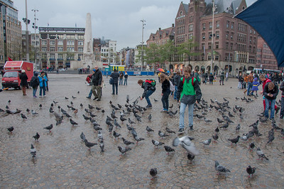 Dam square, in the center of Amsterdam.