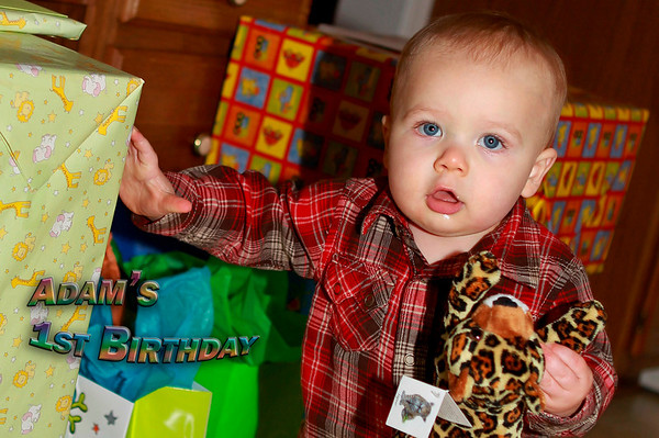 Adam's 1st Birthday Party Nov 2010