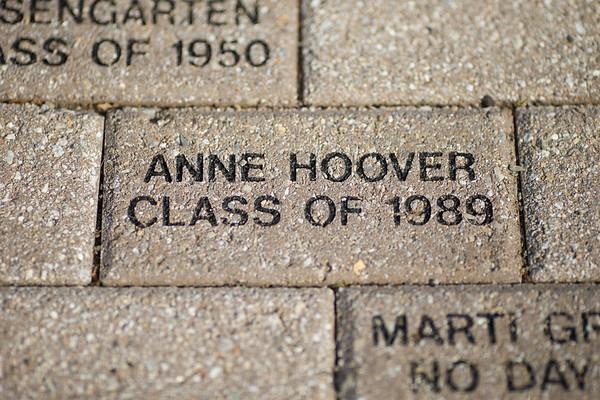 Adelphi | Anne Hoover