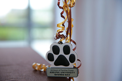 Adelphi 2017 Day of Giving | Copyright: Chris Bergmann Photography