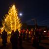 Christmas Tree in Nyksund - in a still, moonlit night
