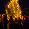 Kindle Christmas Tree in Nyksund - walking around the tree