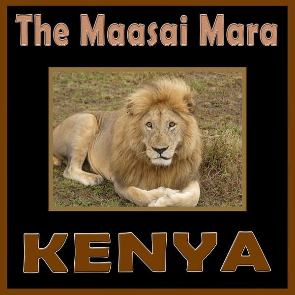004 Maasai Mara