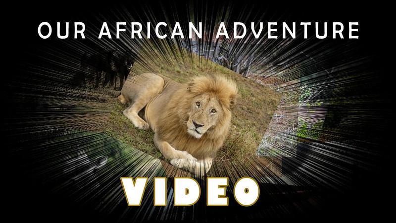 African Adventure Video