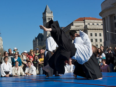 Aikido of Arlington demonstration at the National Cherry Blossom Festival