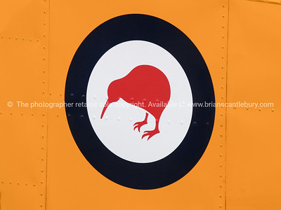 Red kiwi on white circle with black ring on side of vintage plane close-up.