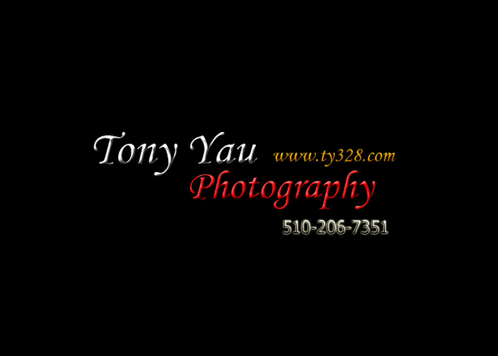 "Copyright ""ty328"" ""Tony Yau"" Photography. All Rights Reserved.<br /> Not be used without prior permission from the Copyright Holder. This image must not be syndicated or transferred to other systems or third parties. Storage and archiving is not permitted. Any unauthorized use or reproduction of this image will constitute a violation of copyright."