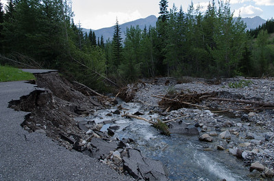 King Creek Trail near the highway 40/peter lougheed intersection