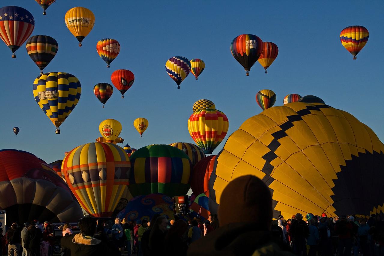 Rising With The Sun @ Albuquerque Festival - jbaz49