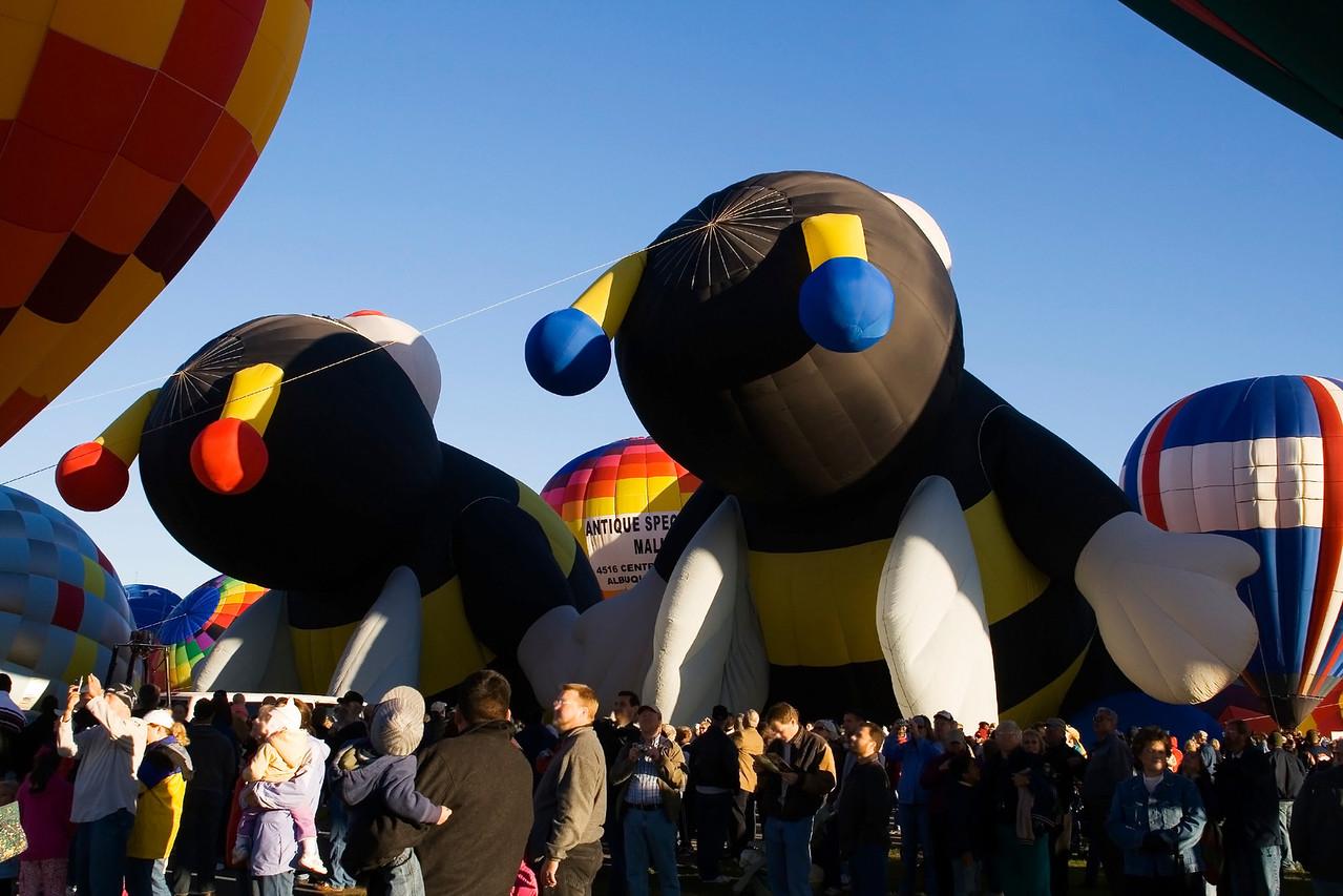 Joey & Lily Little Bee  Come Alive @ Albuquerque Festival - jbaz38
