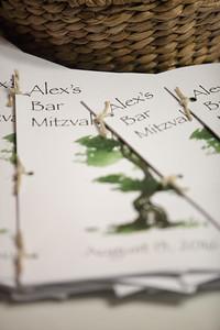 Bar Mitzvah-2