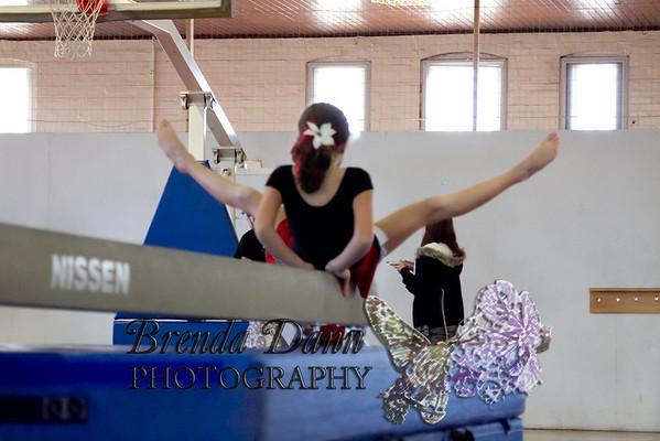 Allison's Gymnastics Demonstration 11-2011